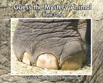 Guess the Mystery Animal - Book One