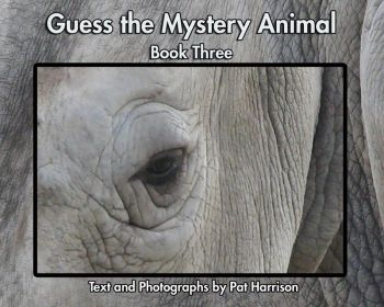 Guess the Mystery Animal - Book Three