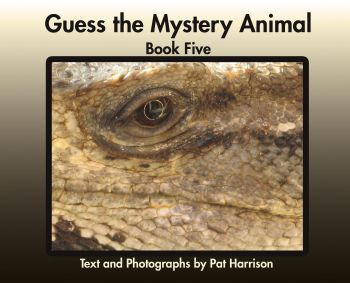 Guess the Mystery Animal - Book Five