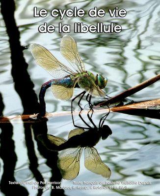 Le cycle de vie de la libellule
