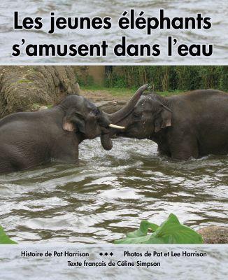 Les jeunes éléphants s'amusent dans l'eau