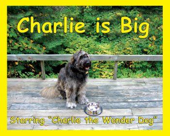 Charlie is Big