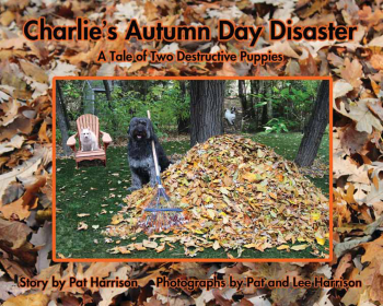 Charlie's Autumn Day Disaster
