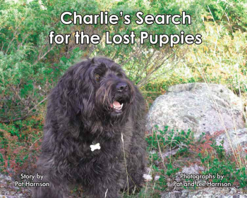 Charlie's Search for the Lost Puppies