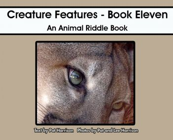 Creature Features - Book Eleven