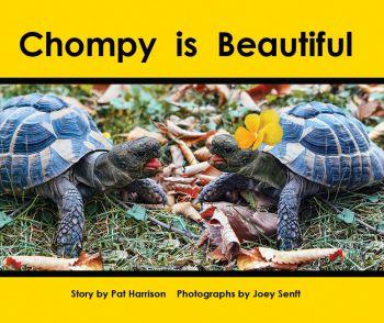 Chompy is Beautiful