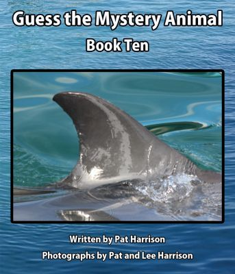 Guess the Mystery Animal - Book Ten