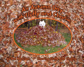 An Autumn Day with Fluffy and Charlie