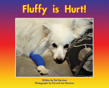 Fluffy is Hurt!