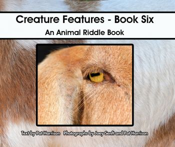 Creature Features - Book Six