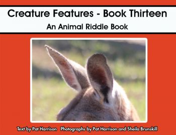 Creature Features - Book Thirteen