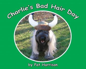 Charlie's Bad Hair Day