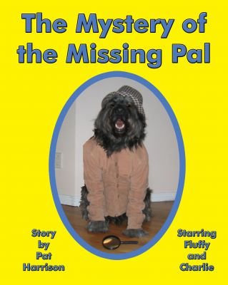 The Mystery of the Missing Pal