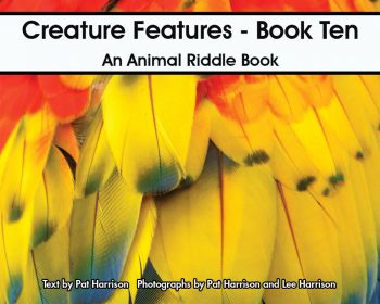 Creature Features - Book Ten