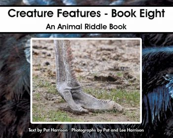 Creature Features - Book Eight