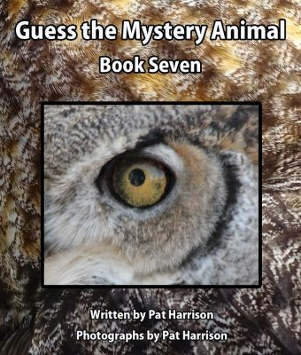 Guess the Mystery Animal - Book Seven