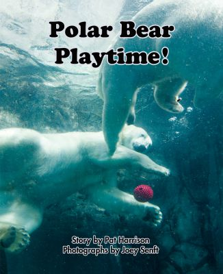 Polar Bear Playtime!