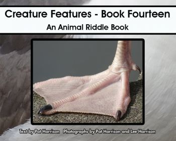 Creature Features - Book Fourteen