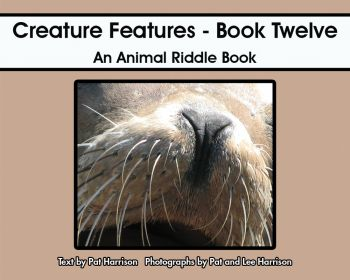 Creature Features - Book Twelve